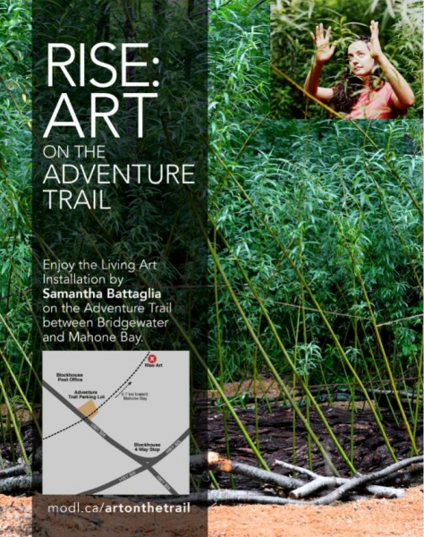 RISE ART ON THE TRAIL MAP